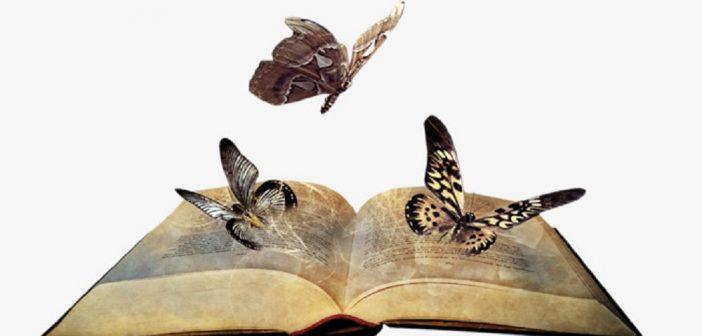 """""""O livro e a borboleta"""", crônica de Alberto da Cunha Melo"""